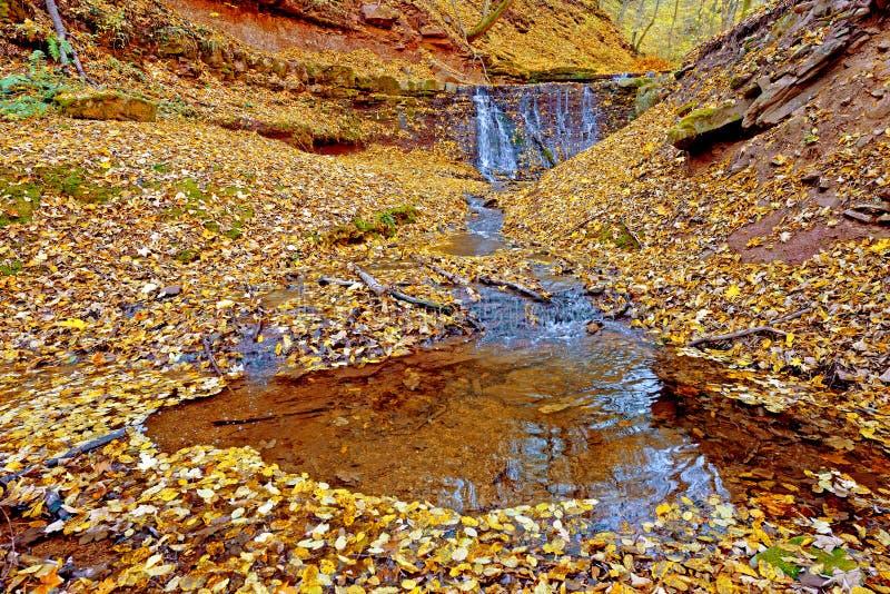 Bello paesaggio con una cascata nel legno di autunno (Harmo immagini stock libere da diritti