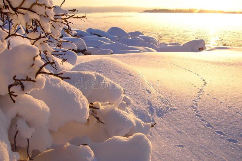 Bello paesaggio del mare di inverno al tramonto con nebbia fotografia stock