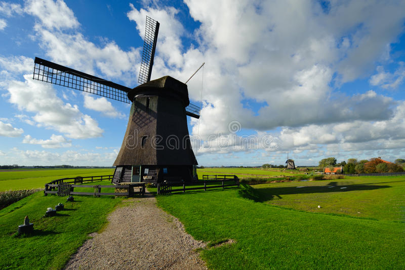 Bello paesaggio del mulino a vento nei Paesi Bassi immagine stock libera da diritti
