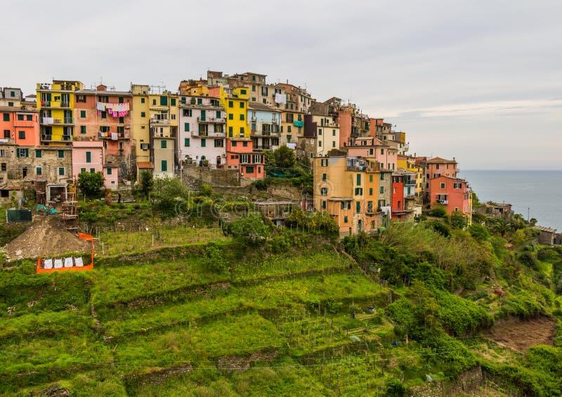 Bello paesaggio del villaggio di Cinque Terre, Corniglia, Italia immagini stock libere da diritti