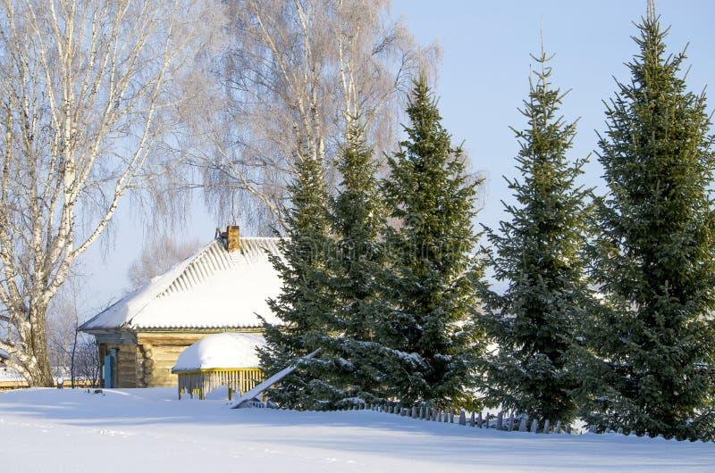 Bello paesaggio dell'inverno in Siberia fotografia stock