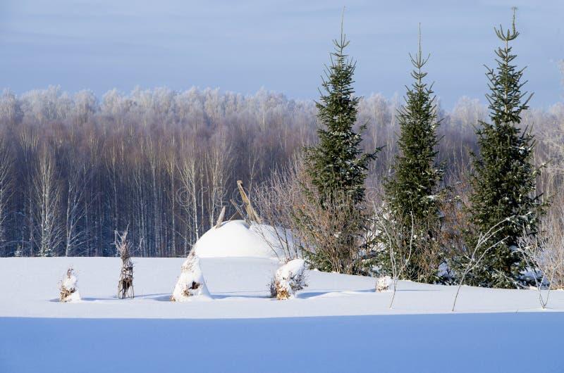 Bello paesaggio dell'inverno in Siberia immagini stock libere da diritti