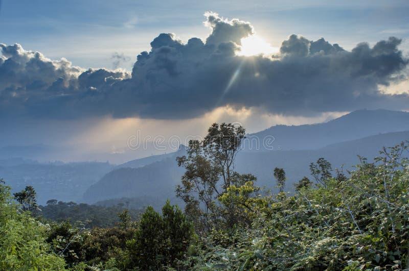Bello paesaggio della foresta nelle montagne durante il tramonto fotografia stock libera da diritti