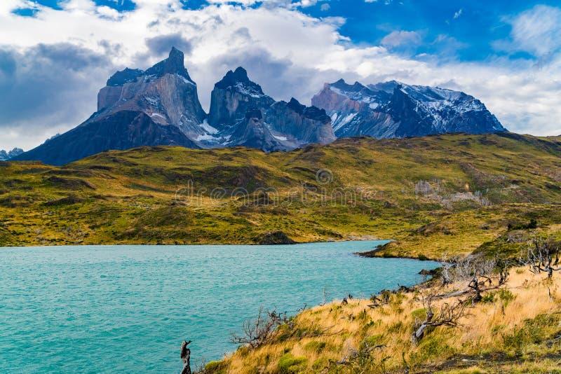 Bello paesaggio della montagna con le montagne di Cuernos del Paine ed il lago Pehoe della montagna immagine stock libera da diritti