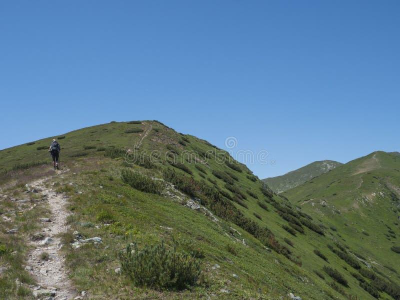 Bello paesaggio della montagna delle montagne occidentali o di Rohace di Tatra con la viandante degli uomini con la traccia di es fotografie stock