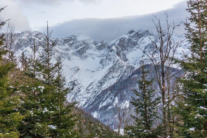 Bello paesaggio della montagna di inverno di Snowy fotografie stock libere da diritti
