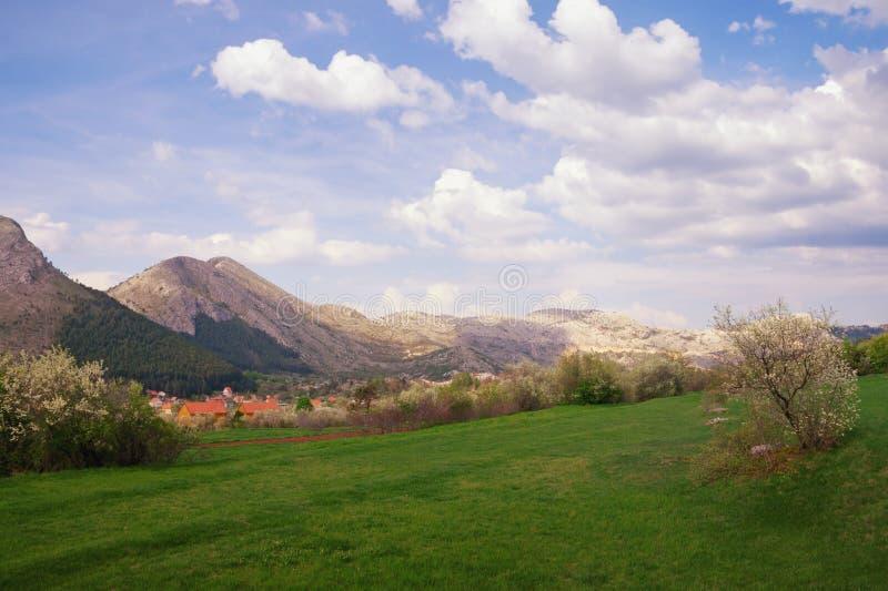 Bello paesaggio della montagna il giorno di molla Il Montenegro, vista del parco nazionale di Lovcen fotografia stock libera da diritti