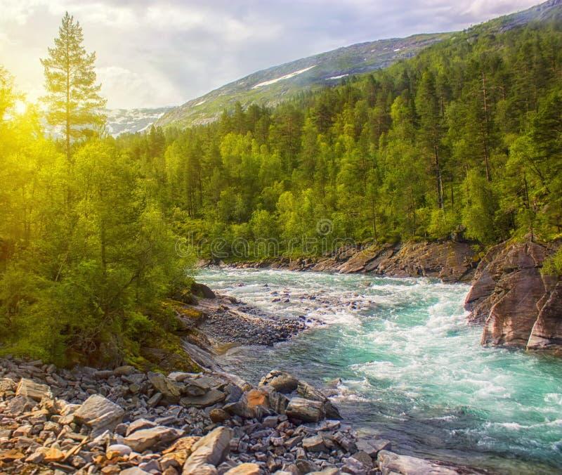 Bello paesaggio della Norvegia con le montagne ed il fiume ghiacciato fotografia stock