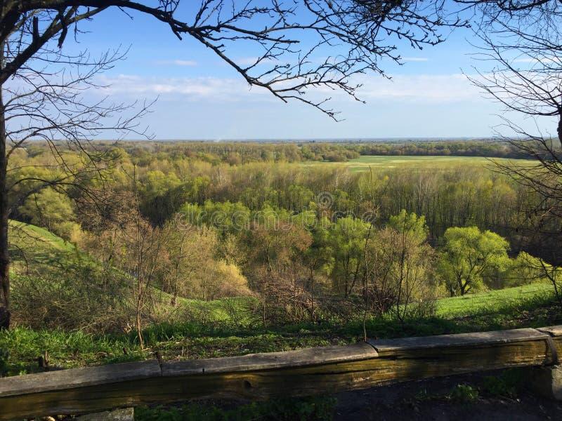 Bello paesaggio della sorgente Alberi verdi nelle colline, campo, prato, immagini stock