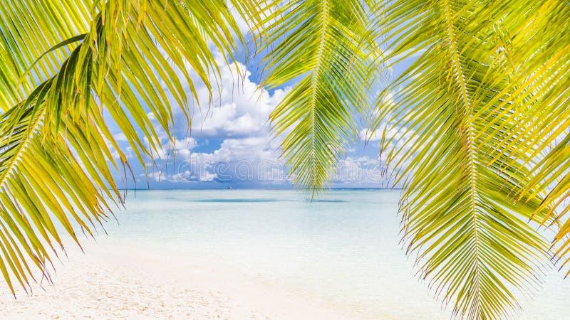 Bello paesaggio della spiaggia Vacanza estiva e concetto di vacanza Spiaggia tropicale ispiratrice Insegna del fondo della spiagg fotografia stock libera da diritti
