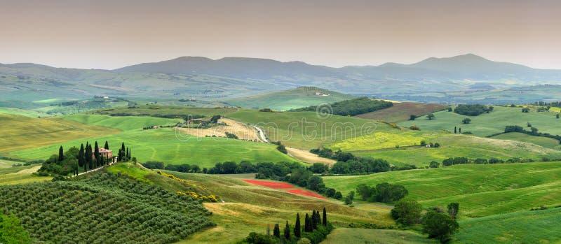 Bello paesaggio della Toscana in Italia, belvedere di Podere in Val d Orcia vicino a Pienza con il cipresso, di olivo fotografia stock libera da diritti