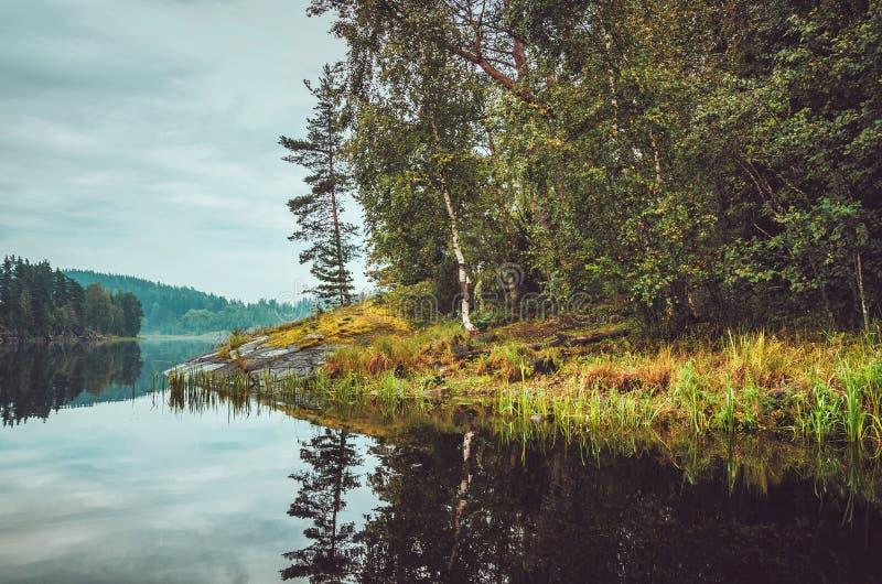 Bello paesaggio di autunno con il lago, pini, costa di pietra naturale nella Repubblica di Carelia, Ladoga, nordica immagine stock libera da diritti