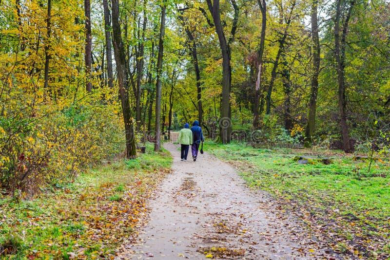Bello paesaggio di autunno Coppie senior che camminano nella foresta di autunno fotografie stock libere da diritti