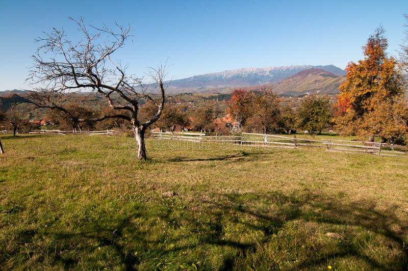 Bello paesaggio di autunno in crusca, Romania fotografia stock