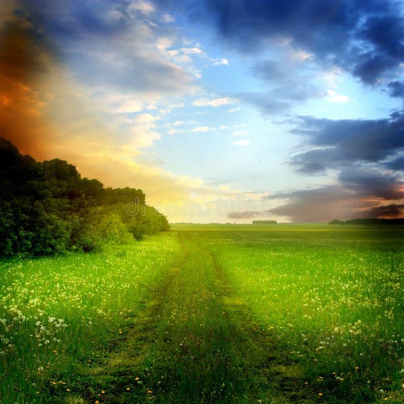 Bello paesaggio di estate immagini stock libere da diritti