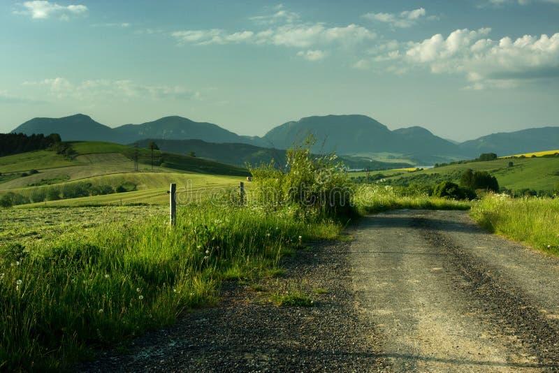 Bello paesaggio di estate immagine stock