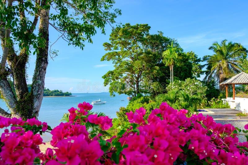 Bello paesaggio di estate con i fiori, gli alberi e la vista del mare con la barca su acqua immagine stock