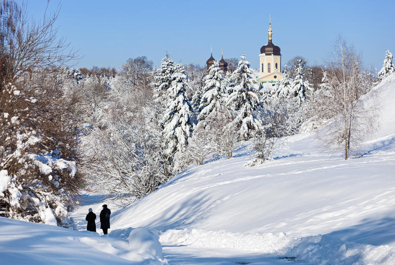 Bello paesaggio di inverno con gli abeti innevati fotografie stock libere da diritti