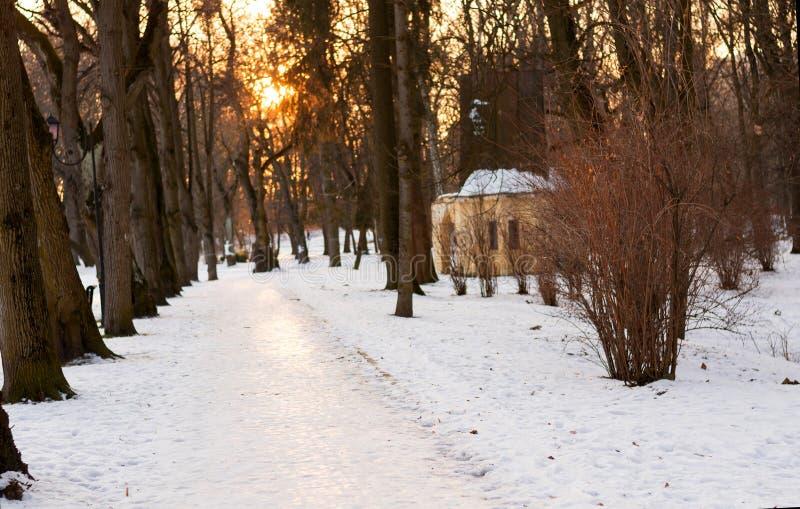 Bello paesaggio di inverno del sentiero per pedoni del parco sul fondo di tramonto e sugli alberi sfrondati Tempo per la camminat immagine stock libera da diritti