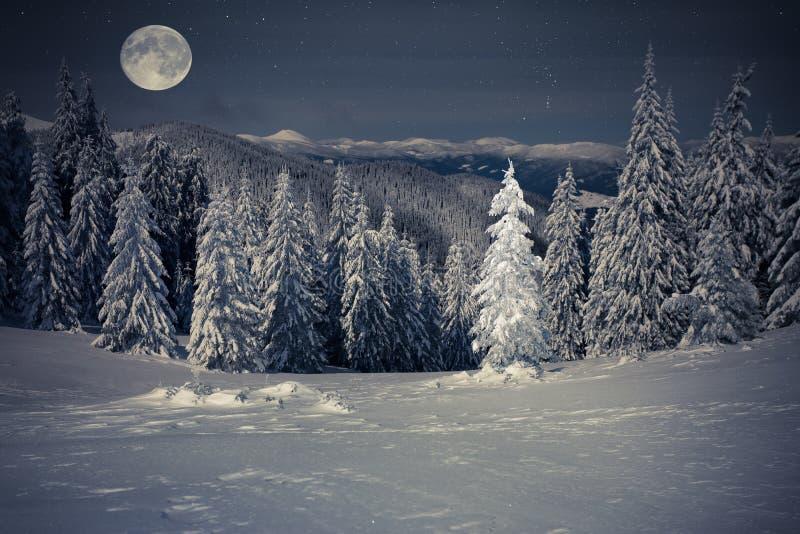 Bello paesaggio di inverno nelle montagne alla notte con le stelle immagini stock