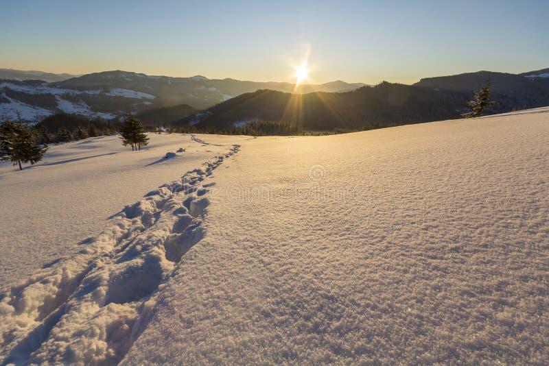 Bello paesaggio di Natale di inverno Percorso umano della pista di orma fotografie stock libere da diritti