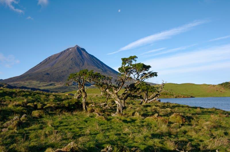 Bello paesaggio di Volcano Pico Azores immagini stock
