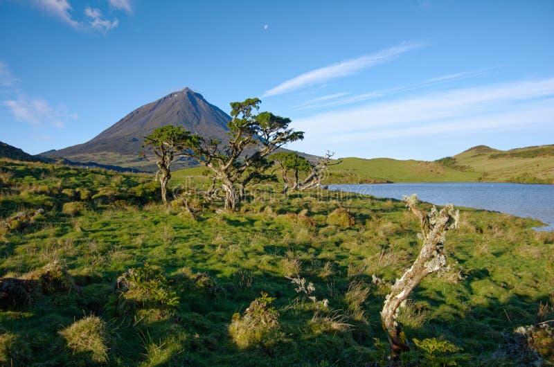 Bello paesaggio di Volcano Pico Azores immagini stock libere da diritti