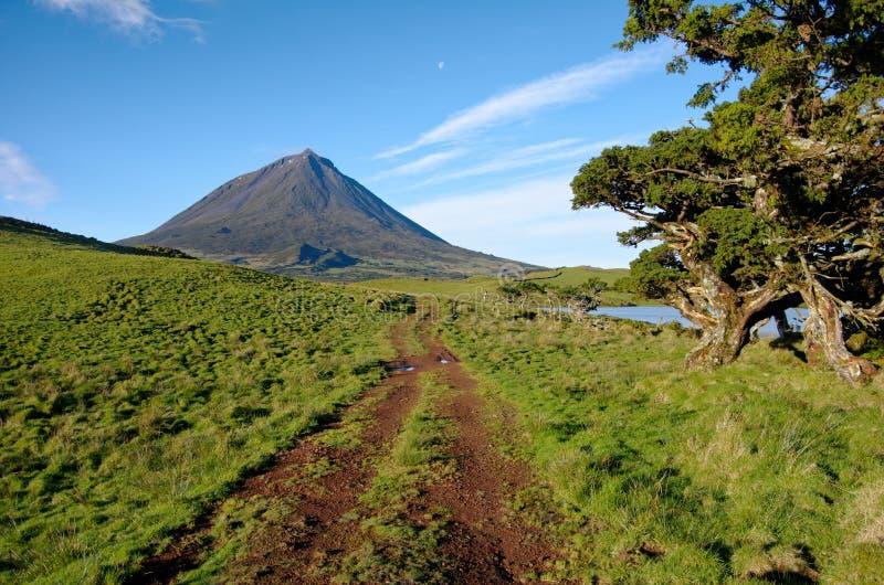Bello paesaggio di Volcano Pico Azores fotografie stock