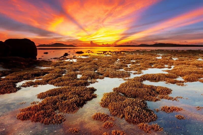 Bello paesaggio drammatico leggero del cielo sopra il mare tropicale con refl fotografia stock