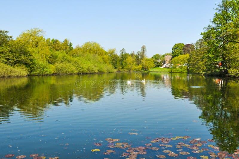 Bello paesaggio in East Midlands immagine stock libera da diritti