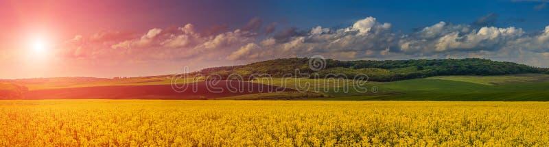 Bello, paesaggio fantastico Il tramonto ed il paese idilliaco abbelliscono con il campo del seme di ravizzone giallo immagini stock libere da diritti