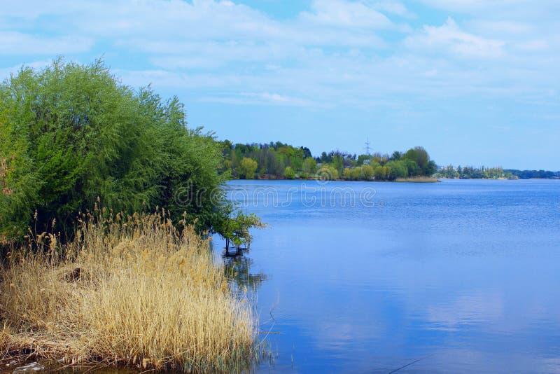 Bello paesaggio Foresta, lago, cielo blu e nuvole bianche Bella priorit? bassa della natura fotografia stock