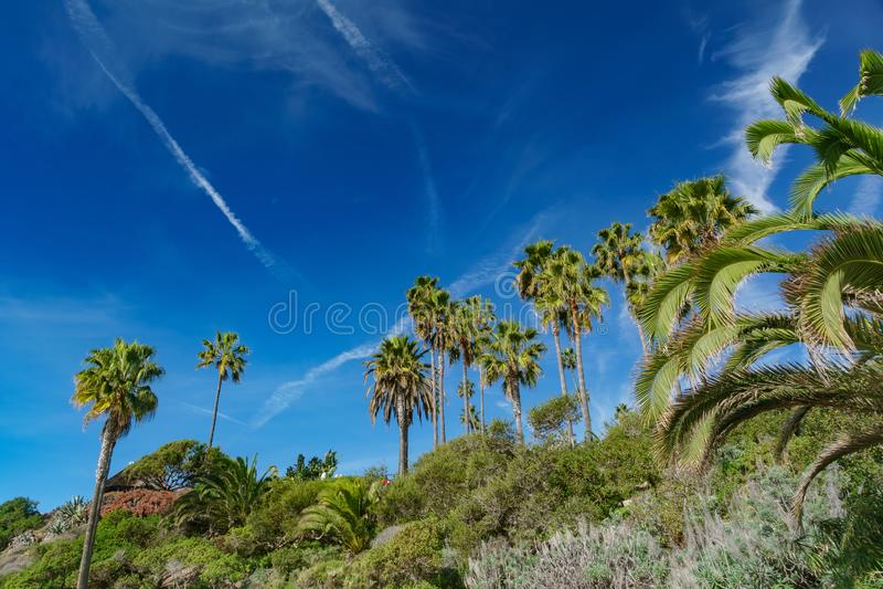 Bello paesaggio intorno al Laguna Beach immagine stock