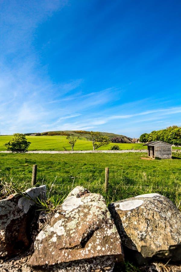 Bello paesaggio nel villaggio della st Abbs, Scozia, Regno Unito immagine stock