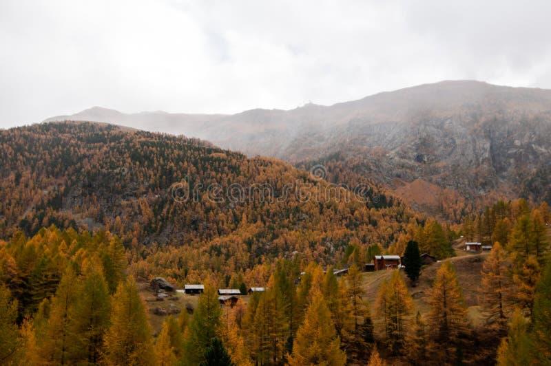 Bello paesaggio nell'area di Zermatt, svizzero Apls di autunno immagini stock libere da diritti