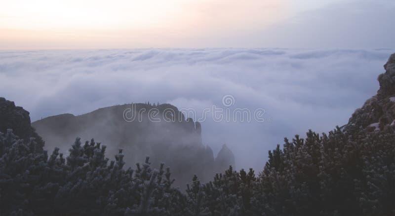 Bello paesaggio nelle montagne immagine stock libera da diritti