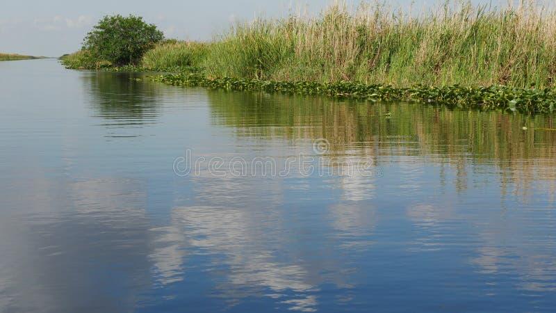 Bello paesaggio pacifico nelle Everglades di Florida immagini stock