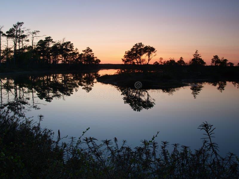 Bello paesaggio in palude di Marimetsa fotografie stock libere da diritti