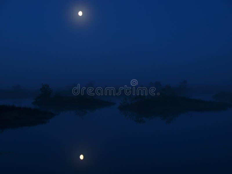 Bello paesaggio in palude di Marimetsa fotografia stock