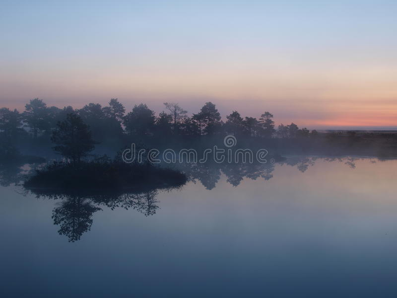 Bello paesaggio in palude di Marimetsa immagini stock