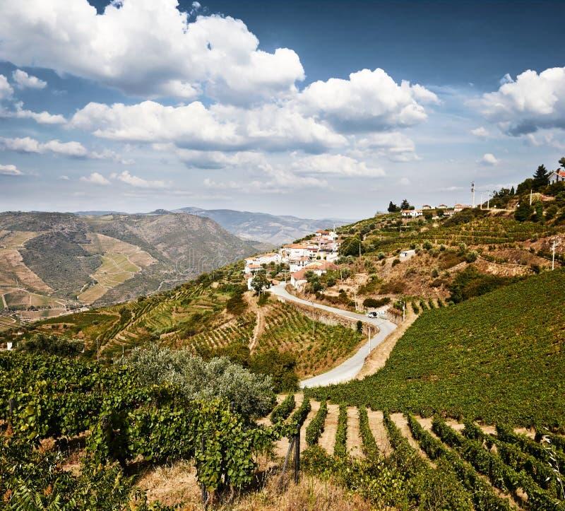 Bello paesaggio rurale nella regione del Duero fotografia stock libera da diritti