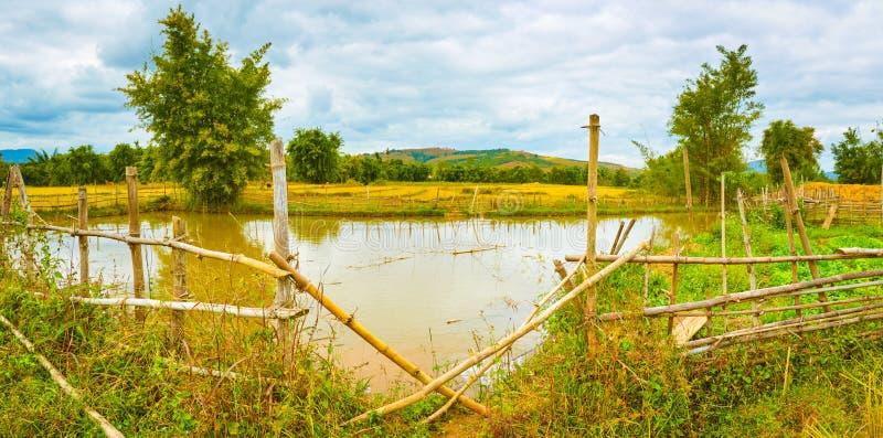 Bello paesaggio rurale, stagno sulla priorità alta laos Panoram fotografie stock