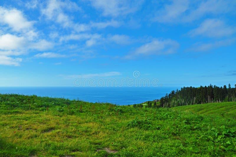 Bello paesaggio sull'isola di San Miguel immagini stock libere da diritti