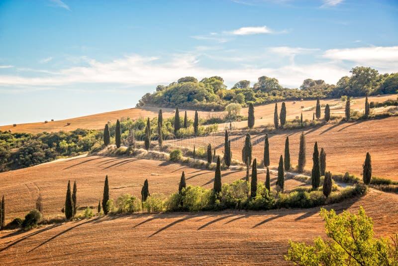 Bello paesaggio tipico della Toscana con le file dei cipressi, La Foce, Toscana Italia fotografia stock