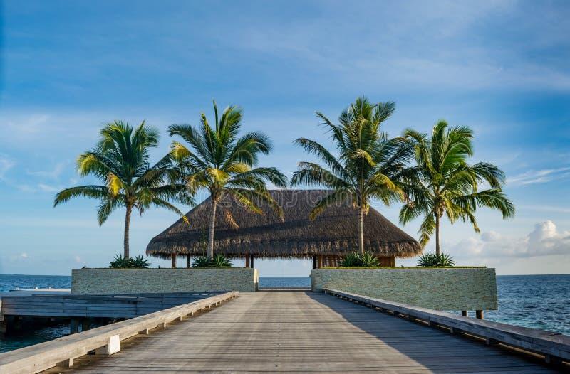 Bello paesaggio tropicale con la capanna di legno sul ponte con le palme vicino all'oceano alle Maldive fotografia stock