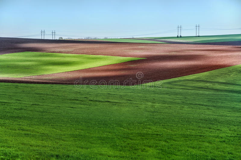Bello paesaggio verde di estate del campo fotografie stock libere da diritti