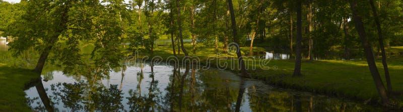 Bello panorama della natura del parco di Gatcina immagine stock libera da diritti