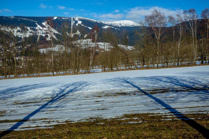 Bello panorama di inverno delle montagne giganti con ombre lunghe degli alberi immagine stock libera da diritti