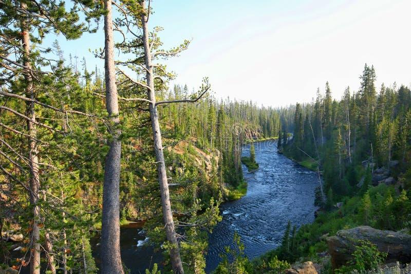 Bello parco nazionale di Yellowstone immagini stock libere da diritti