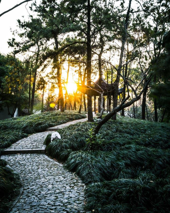 Bello parco verde con un piccolo supporto conico di legno e un percorso di pietra stretto con il tramonto di stupore immagine stock libera da diritti